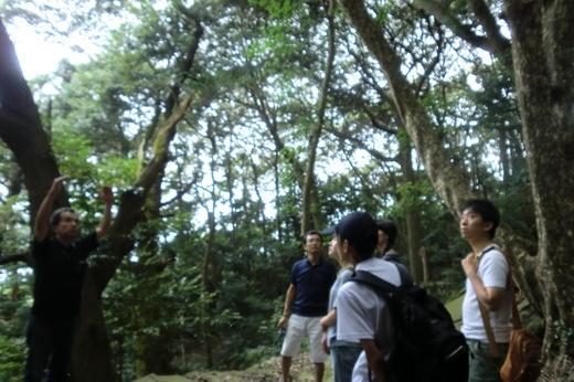 アーキペラゴ豊島ツアー