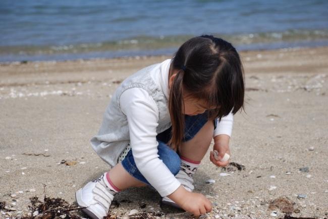 きれいな貝殻がたくさんあるよ~!!